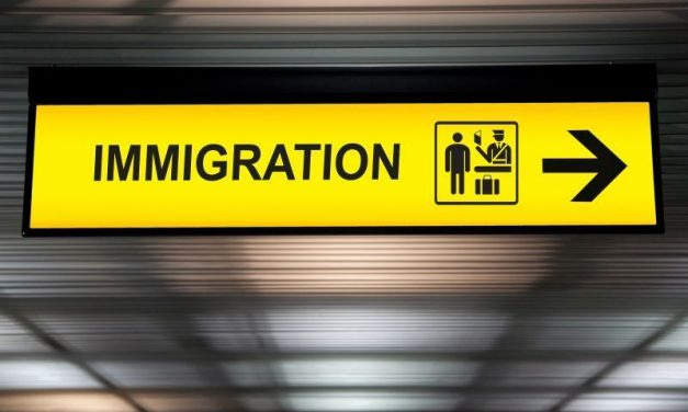 Overpopulation by Immigration – The Cultural Assassination of Ireland