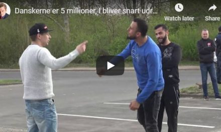 "Migrant tells Danish man: ""You Danes are animals, you will be exterminated"" (VIDEO)"