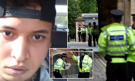 Suspect known to MI5 held over Reading terror knife attack in park that killed three