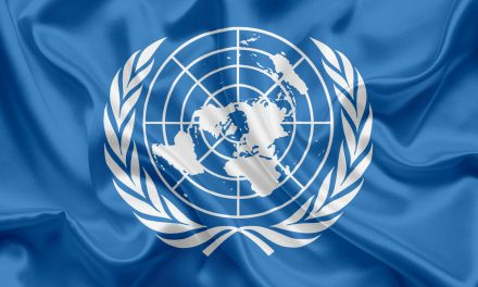 United Nations flag to fly over Leinster House