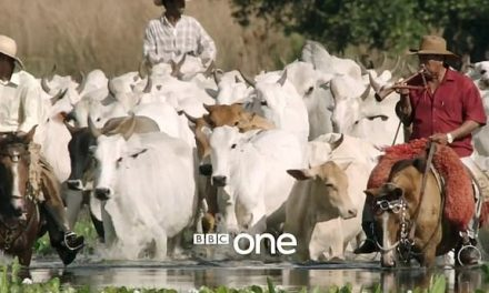Farmers force BBC to remove 'biased' show about meat production from iPlayer