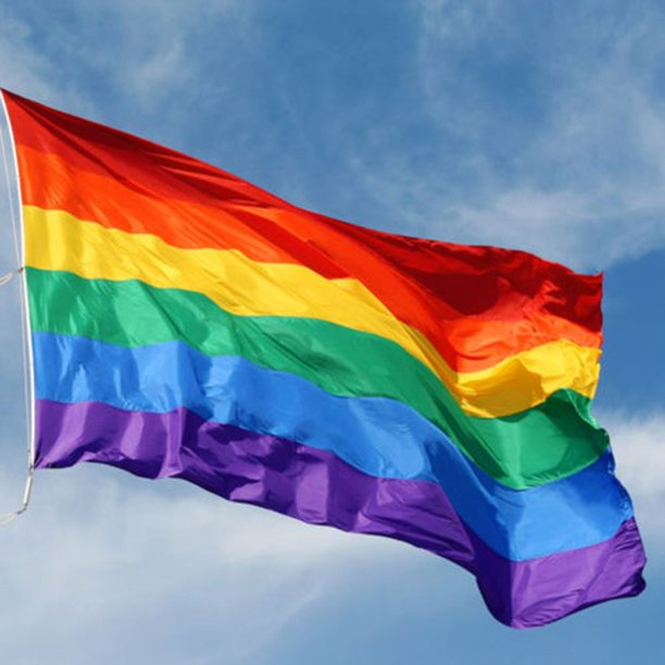 REMOVE RAINBOW FLAGS FROM CATHOLIC SCHOOLS IN IRELAND