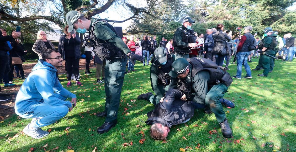 Arrests as hundreds attend anti-lockdown Stormont protest