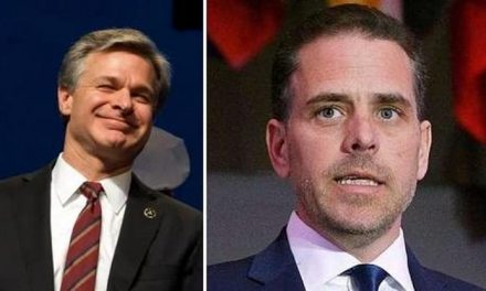 FBI 'HAS TO COME CLEAN' ABOUT CORRUPTION EVIDENCE, POTENTIAL CHILD PORN ON HUNTER BIDEN'S LAPTOP: SEN. JOHNSON