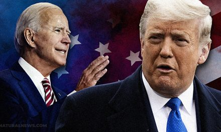 Trump WINS election; Democrats now working overtime to STEAL it by fabricating hundreds of thousands of votes in Michigan and Wisconsin