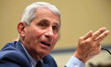 "Fauci admits he's been lying to Americans about ""herd"" immunity"