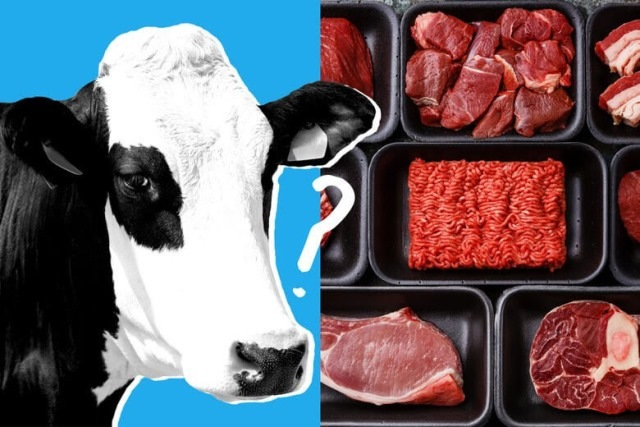 """""""Historic Moment"""" – Meat Grown In Bioreactor Gets Approval In Singapore"""