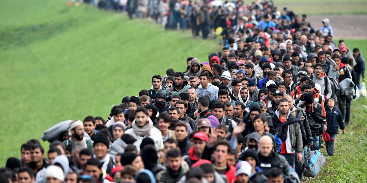 Ireland needs 4-million migrants, claims Central Statistics Office due to recent fertility drop in Irish population