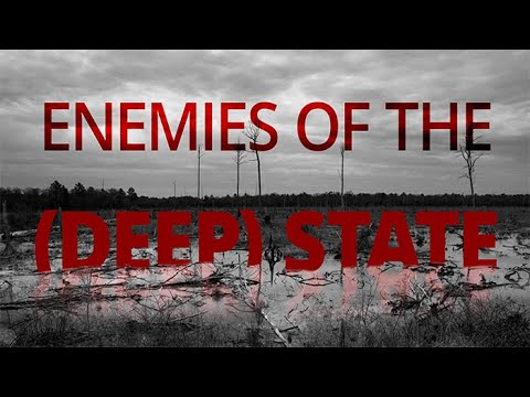Enemies of the Deep State: The Government's War on Domestic Terrorism Is a Trap