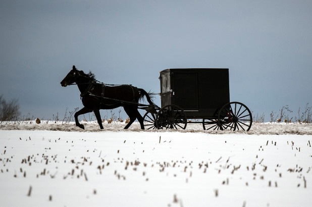 Amish community may have reached COVID 'herd immunity,' health official says