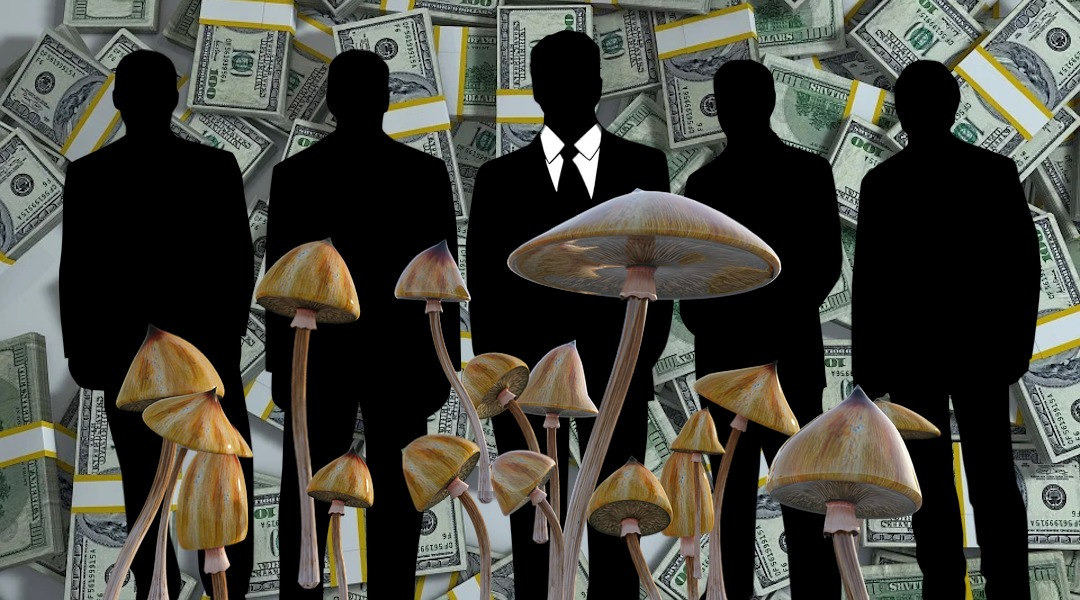 The 'Psychedelic Renaissance' Is Entirely About Corporate Greed